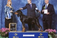3-hound-4-25-2015