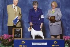 5-terrier-4-25-2015