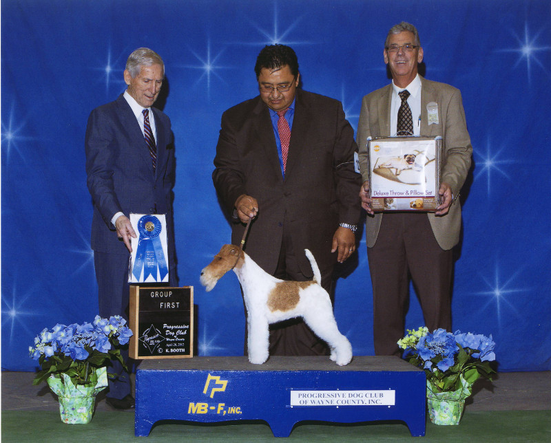 5-terrier-04.28.2012