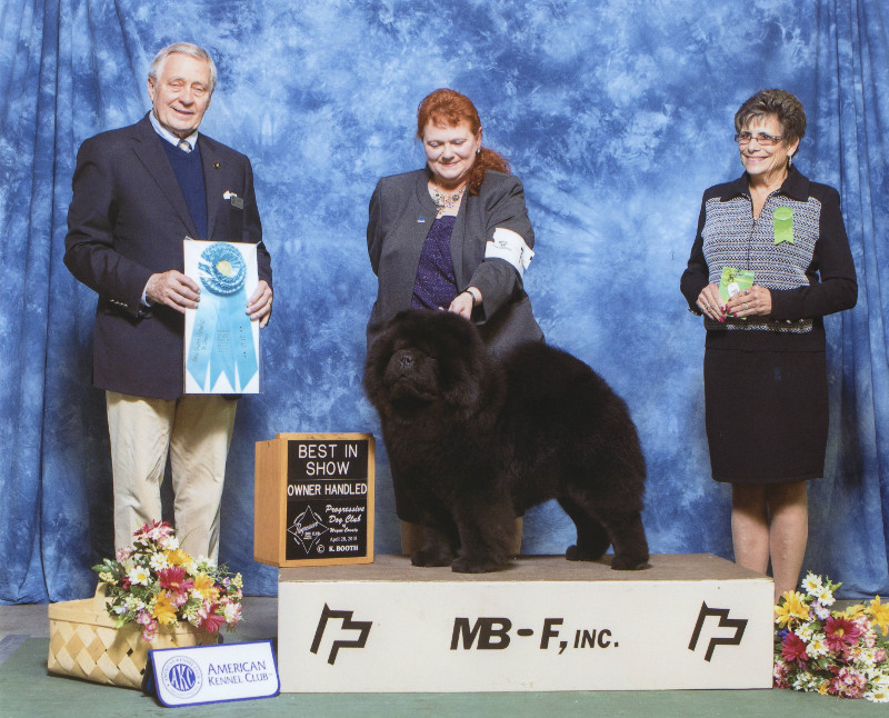 Owner Handled Best in Show
