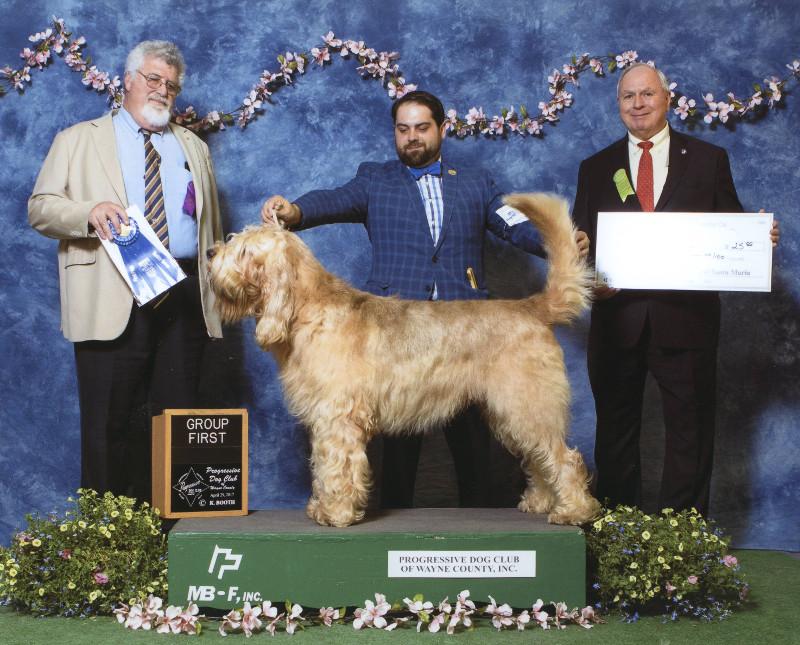 3-hound-4-29-2017