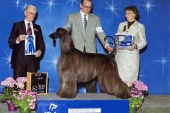 3-hound04302011