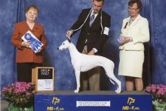3-hound-4-26-2015