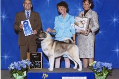 3-hound-04.28.2012