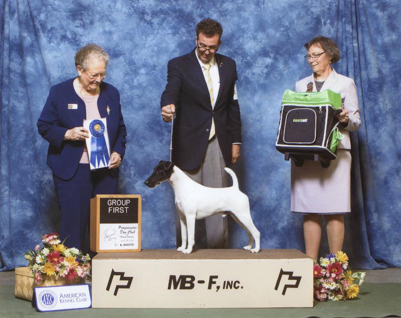 Terrier Group 1