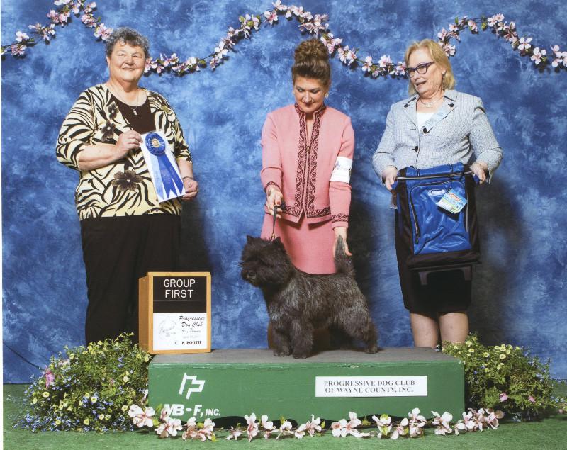 5-terrier-4-30-20170002